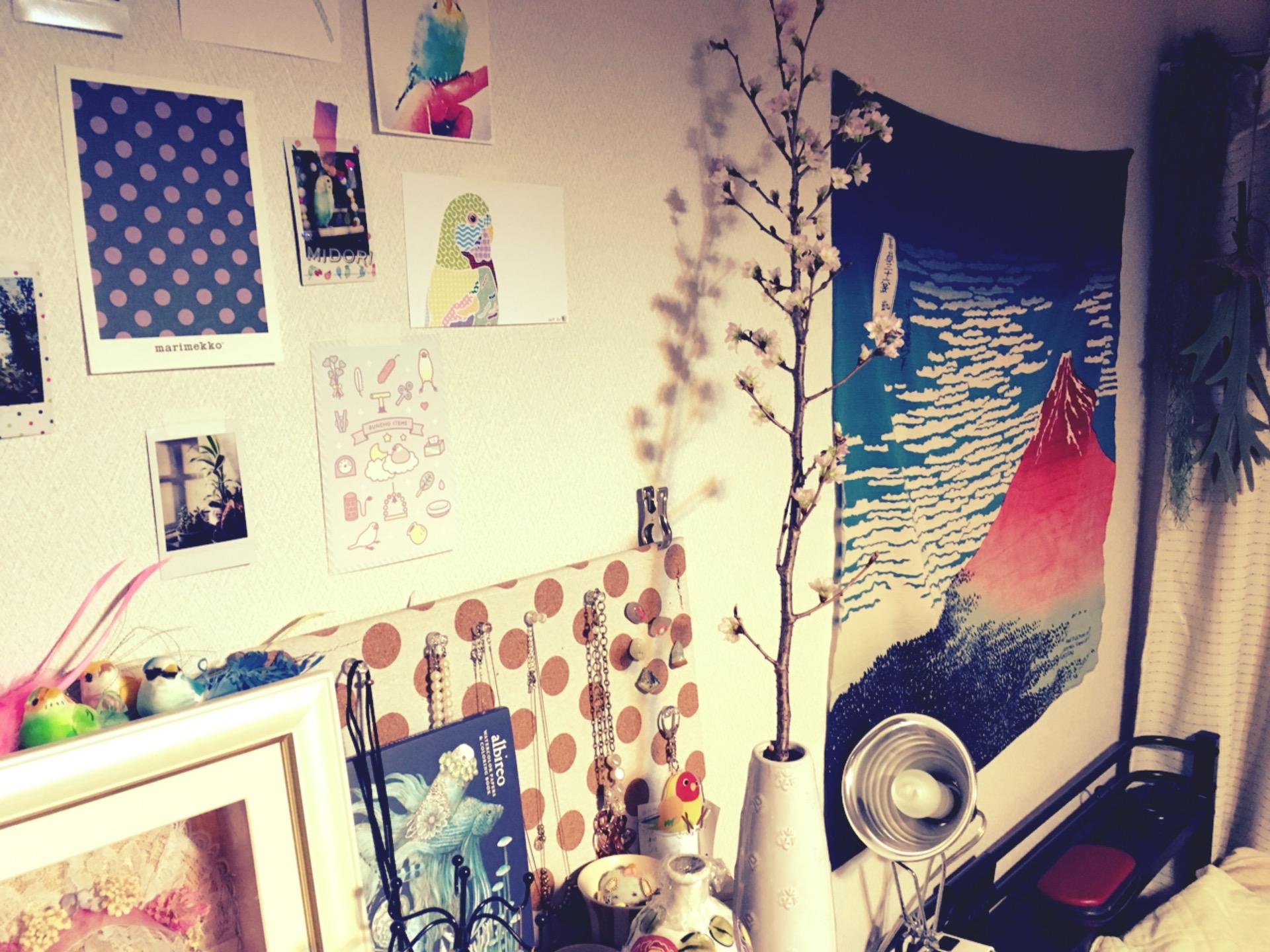 いい感じの桜の枝